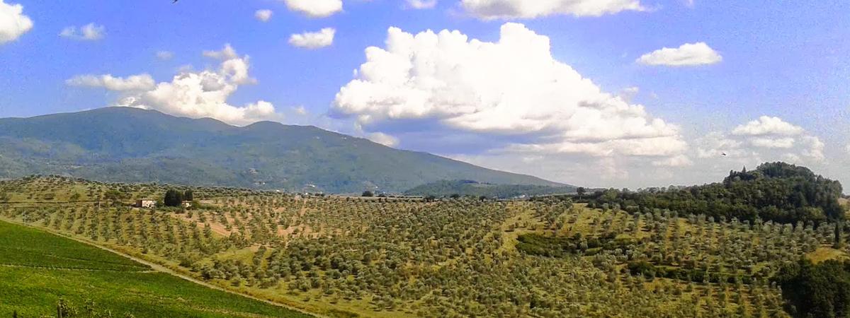 Si scrive Toscana, si Legge turismo